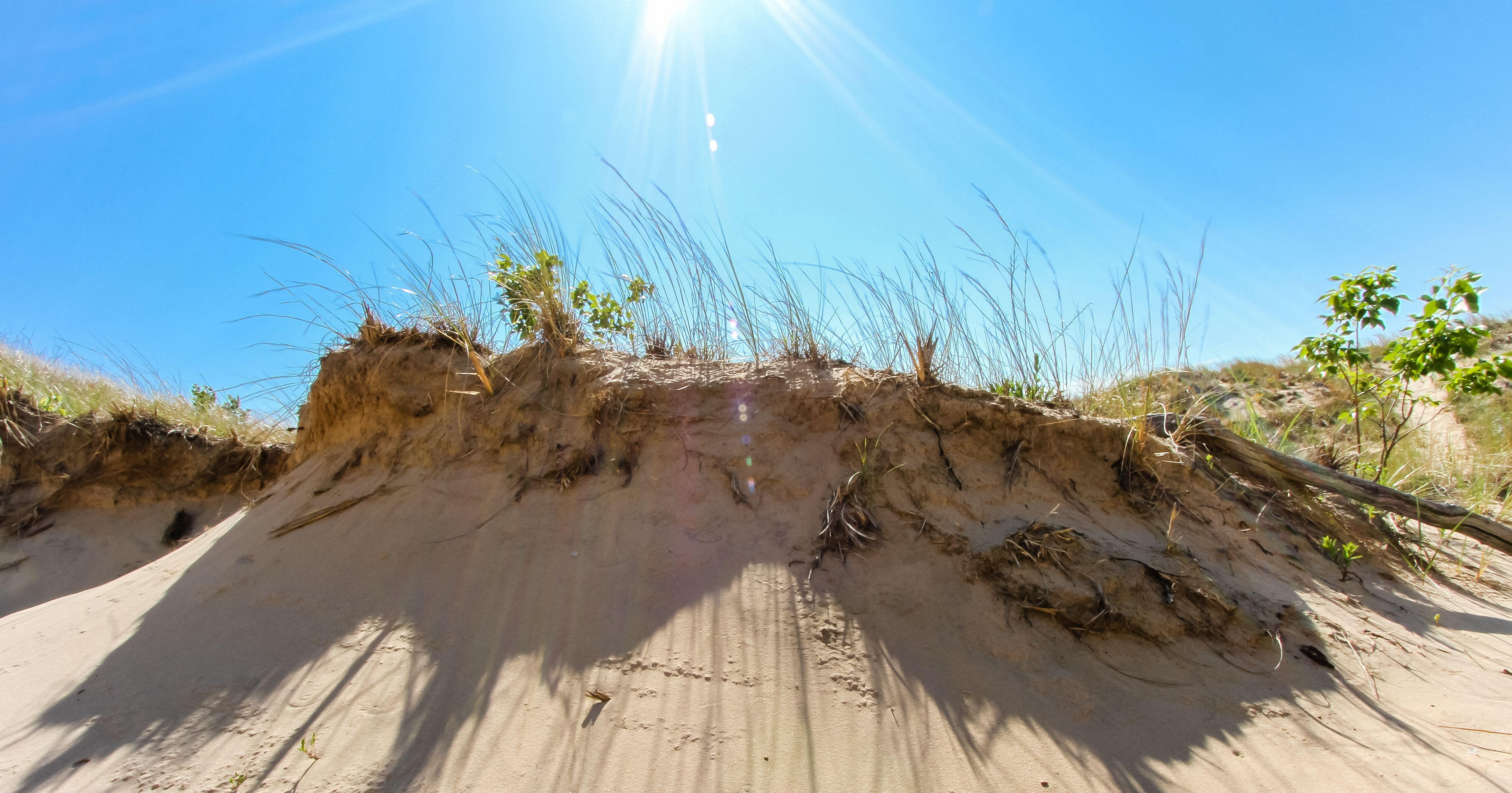 Have you ever wondered—what exactly are the Indiana Dunes