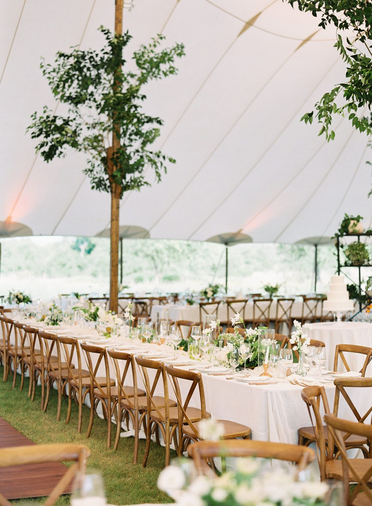 A Timeless Tented Wedding at the Lady Bird Johnson