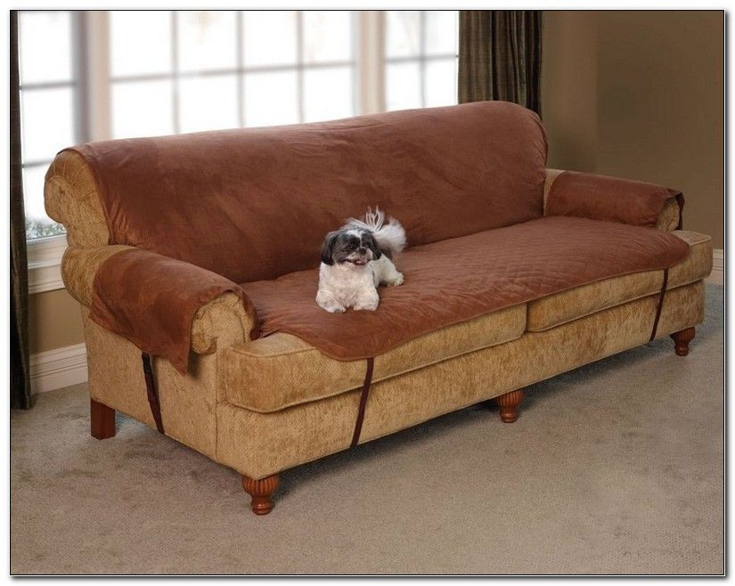 Fine Pet Furniture Covers For Leather Sofas Home Decoration In Pabps2019 Chair Design Images Pabps2019Com