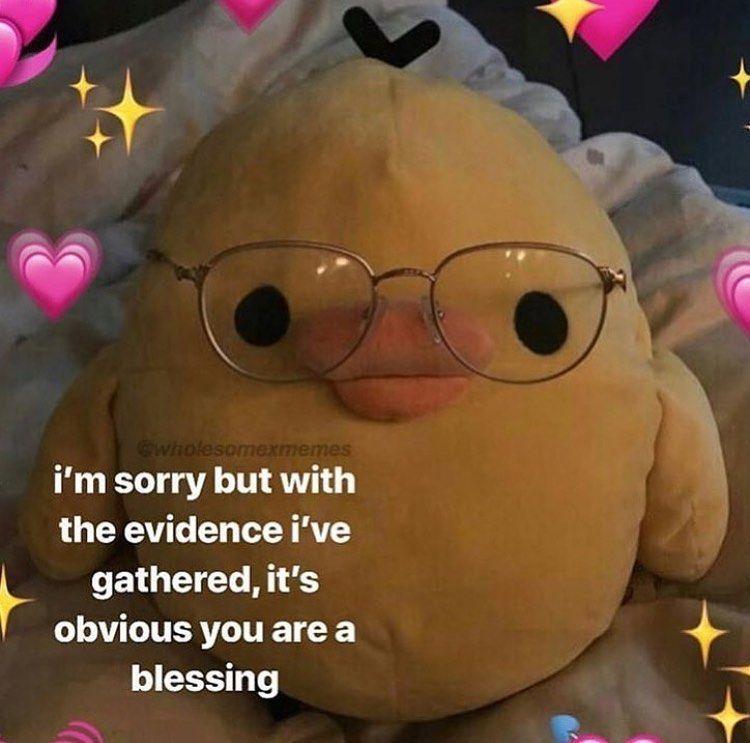 Pin By D On Art Inspo Cute Love Memes Love You Meme Cute Memes