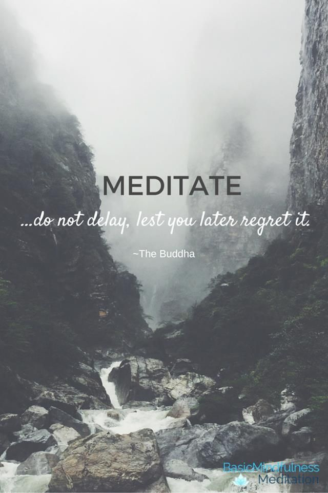 """MEDITATE --- do not delay, lest you later regret it ..."