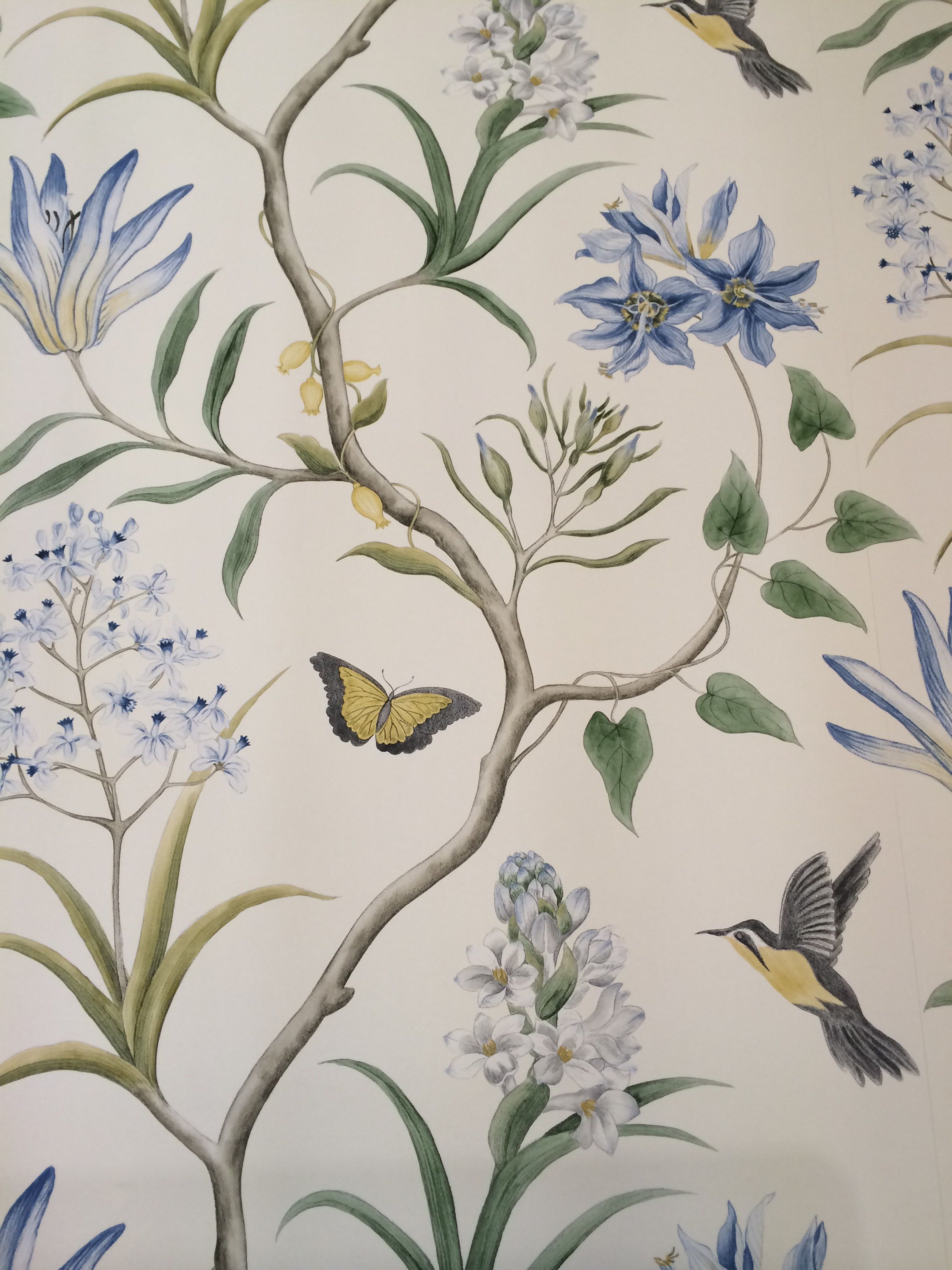 Cream, blue, yellow and grey Bird and Butterfly wallpaper ...