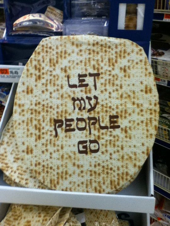 a passover themed toilet seat cover or how not to decorate for
