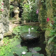 ponds grottos - Google Search