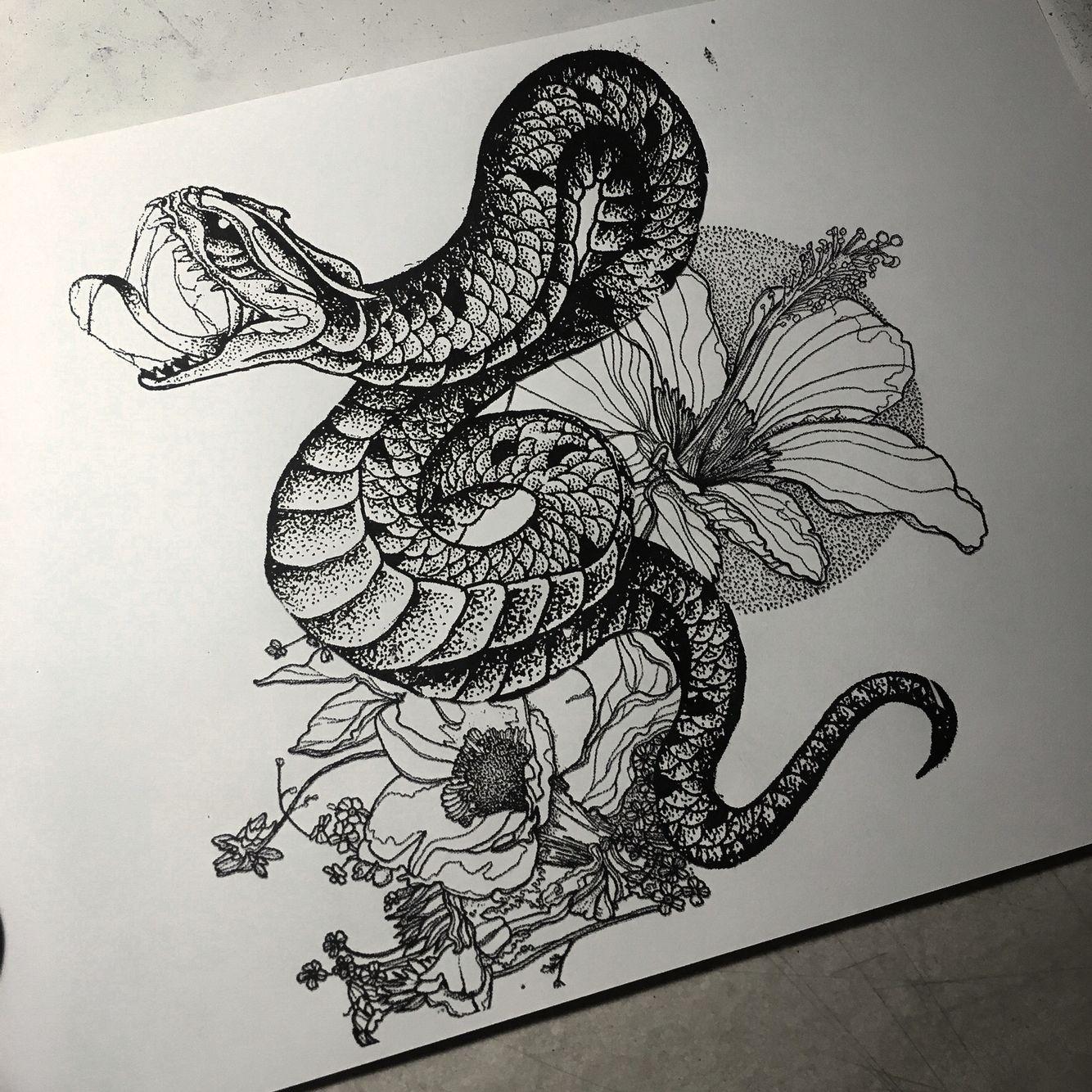 Snake drawing imagens) Desenhos de cobras