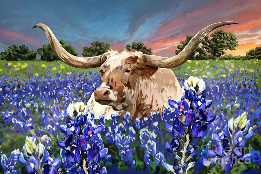 Longhorn In Bluebonnets By Tim Gilliland Western Paintings Cow Art Canvas Art
