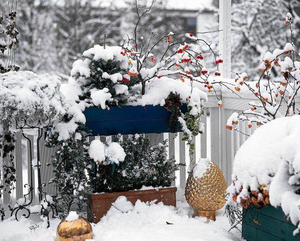 Zdjecie Nr 1 W Galerii Sposob Na Piekny Balkon Zima Winter Garden Holiday Decor Holiday