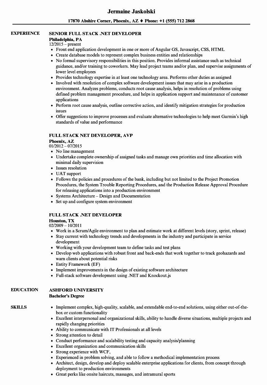 Full Stack Java Developer Resume Beautiful Full Stack Net