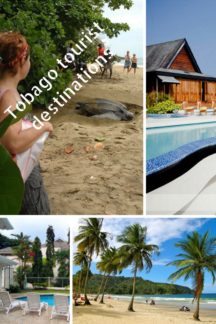 Why Tobago Is The Most Popular Tourist Destinations In The