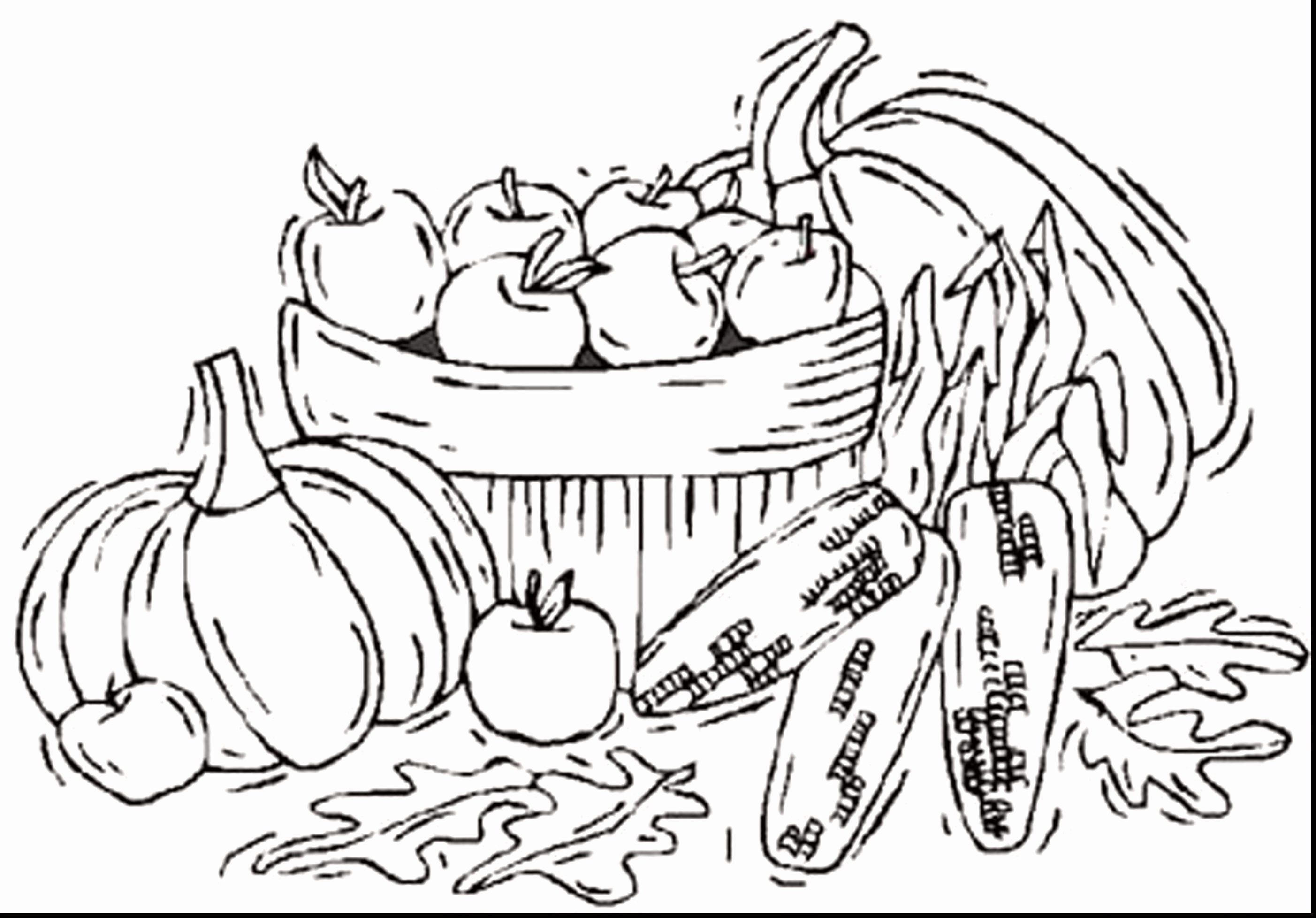 Pin On Best Coloring Page For Girls