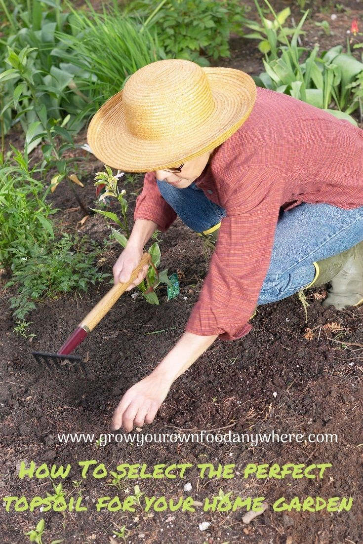 Perfect Topsoil For Your Home Garden Top Soil Grow Your Own Food Grow Your Own