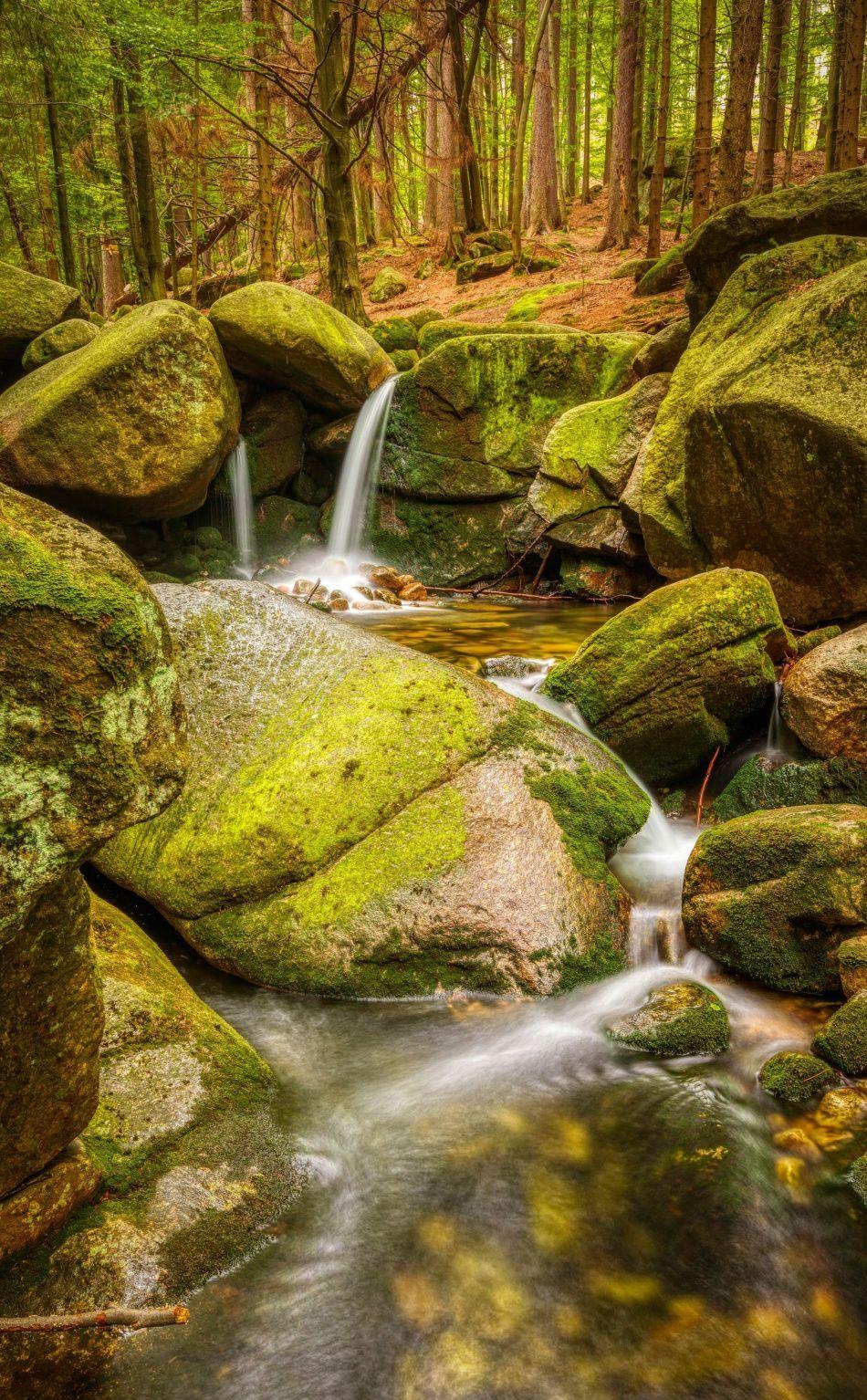 Water Stream Forest Rocks Nature Wallpaper Nature Wallpaper Nature Images Hd Nature Wallpapers