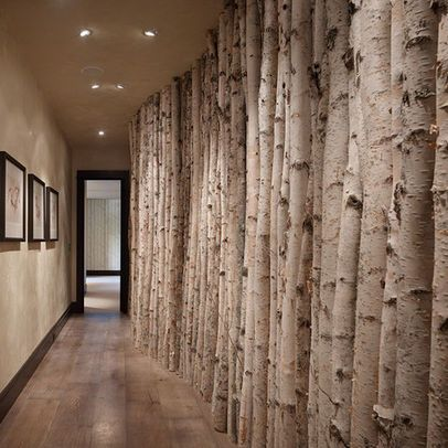 Birch Poles Design Ideas Pictures Remodel And Decor With