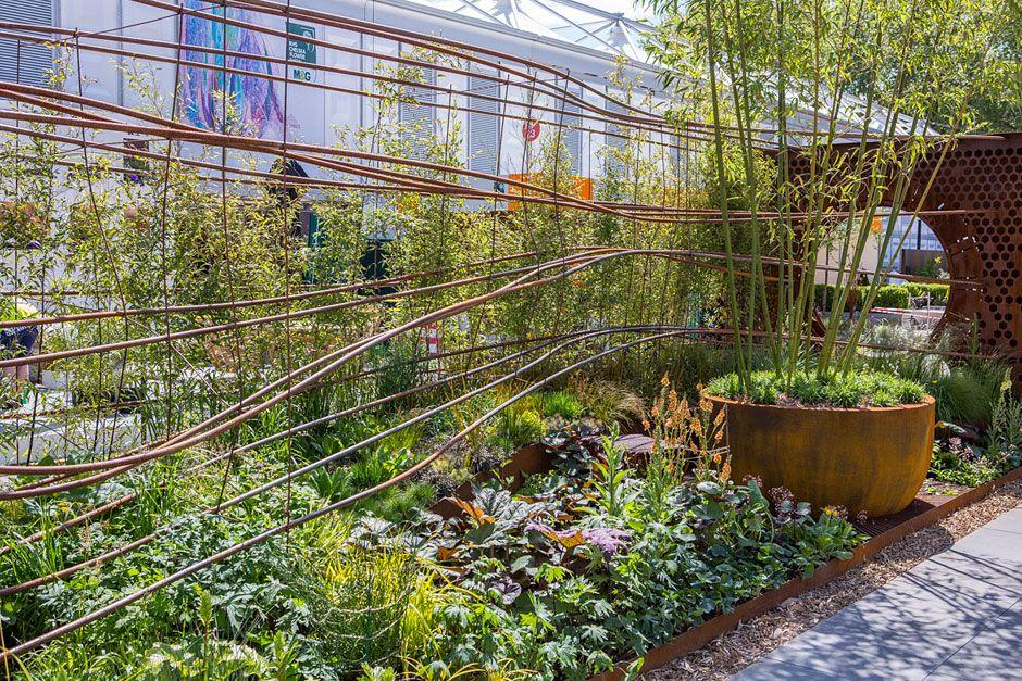 RHS Gardening | Chelsea london, Chelsea flower show, Chelsea
