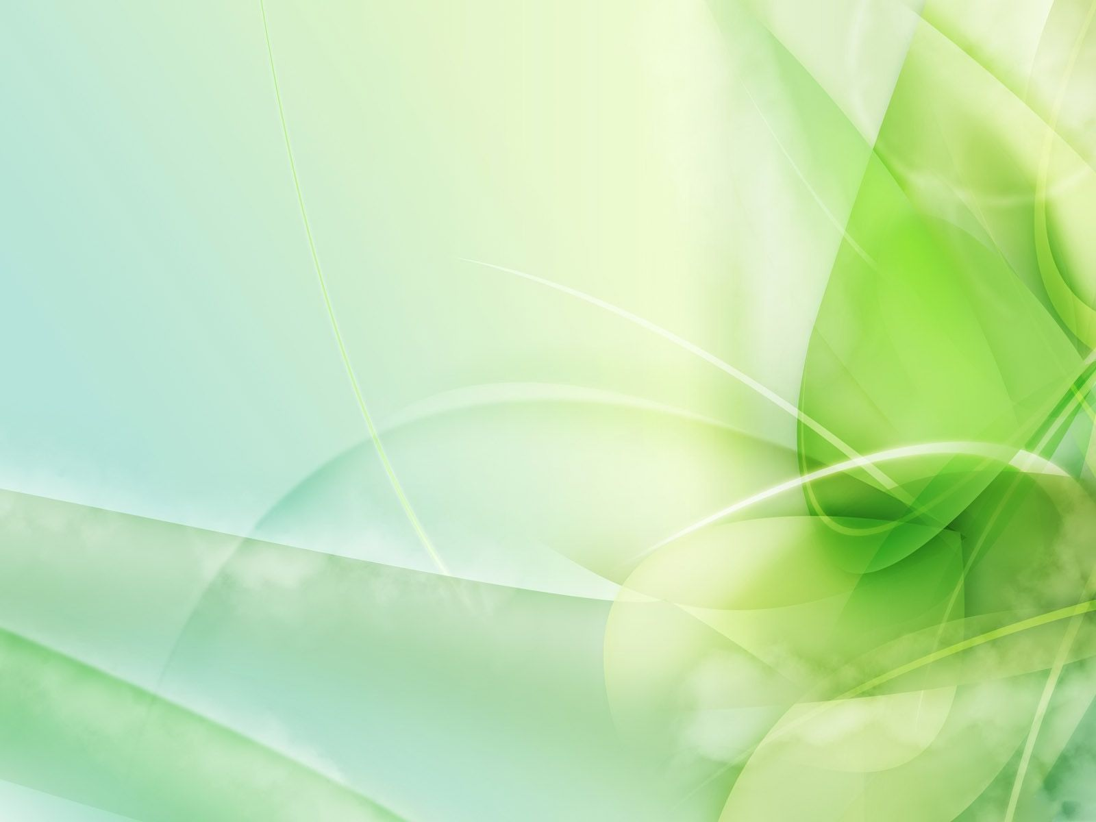 Hd wallpaper green - Blurred Green Leaves Hd Desktop Wallpaper High Definition