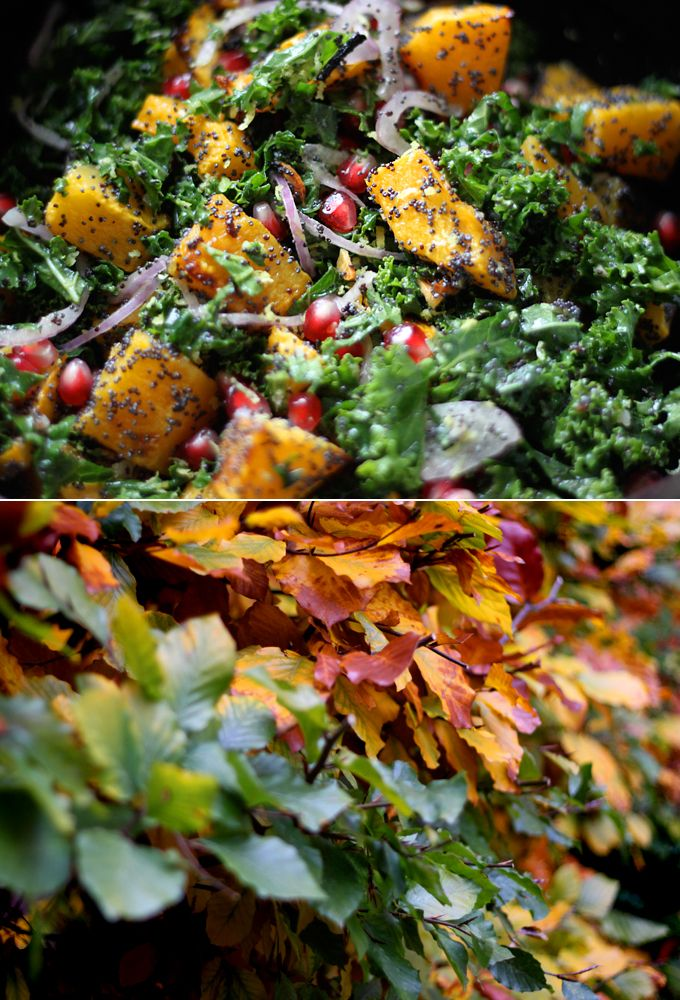 / Poppy Seed-Crusted Butternut Squash with Kale and Pomegranates