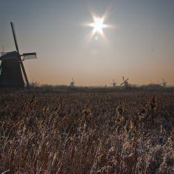 Cold day at Kinderdijk (The Netherlands)