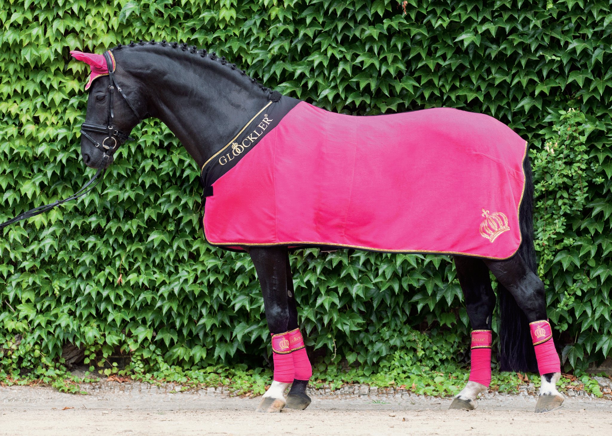 HKM Gloockler Golden Crown Cooler Blanket — EQUUS