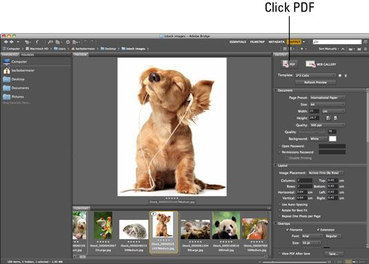 Create pdf from photoshop