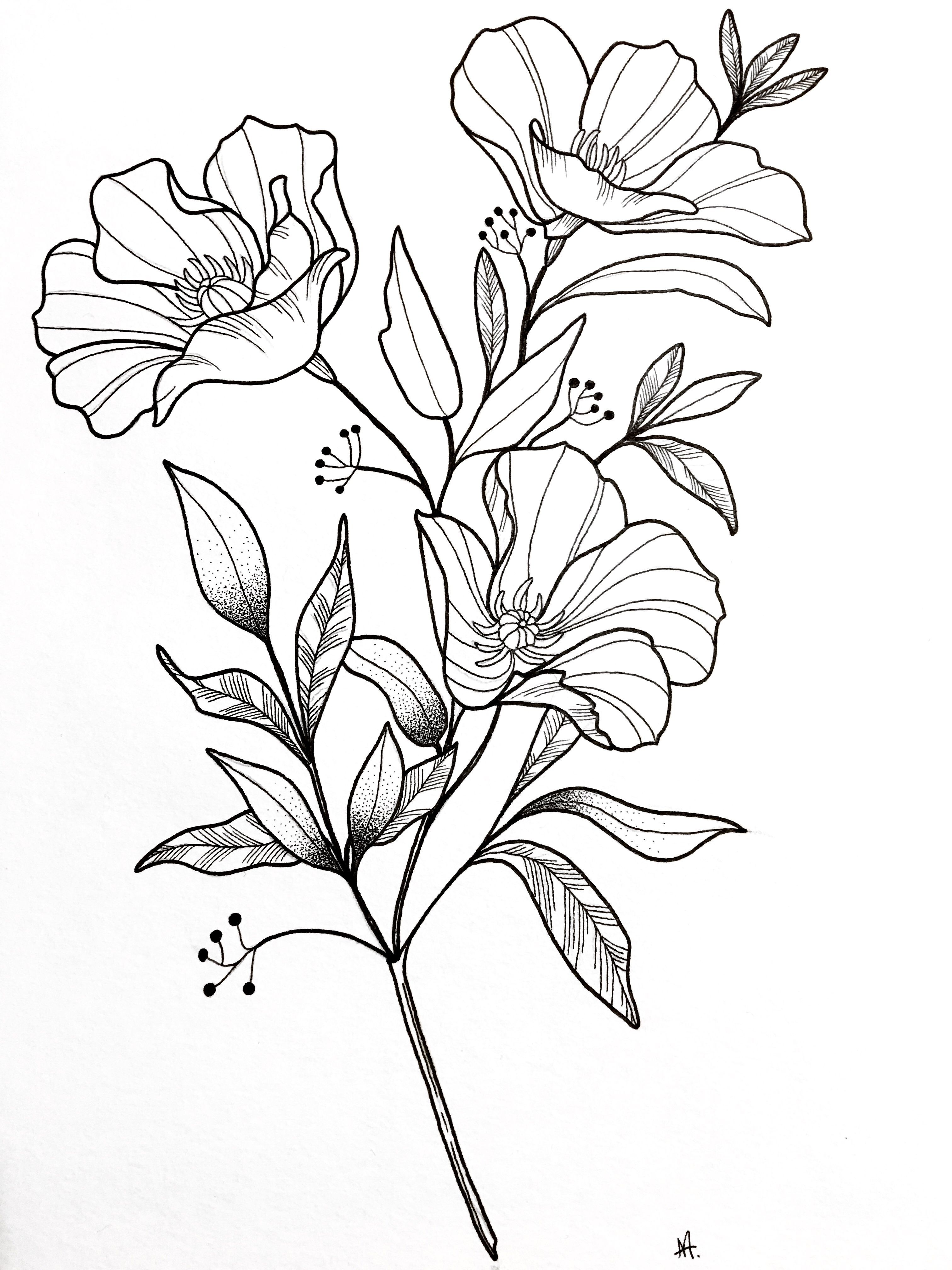 Notitle Flowersdrawingbulletjournal Flowersdrawingloto