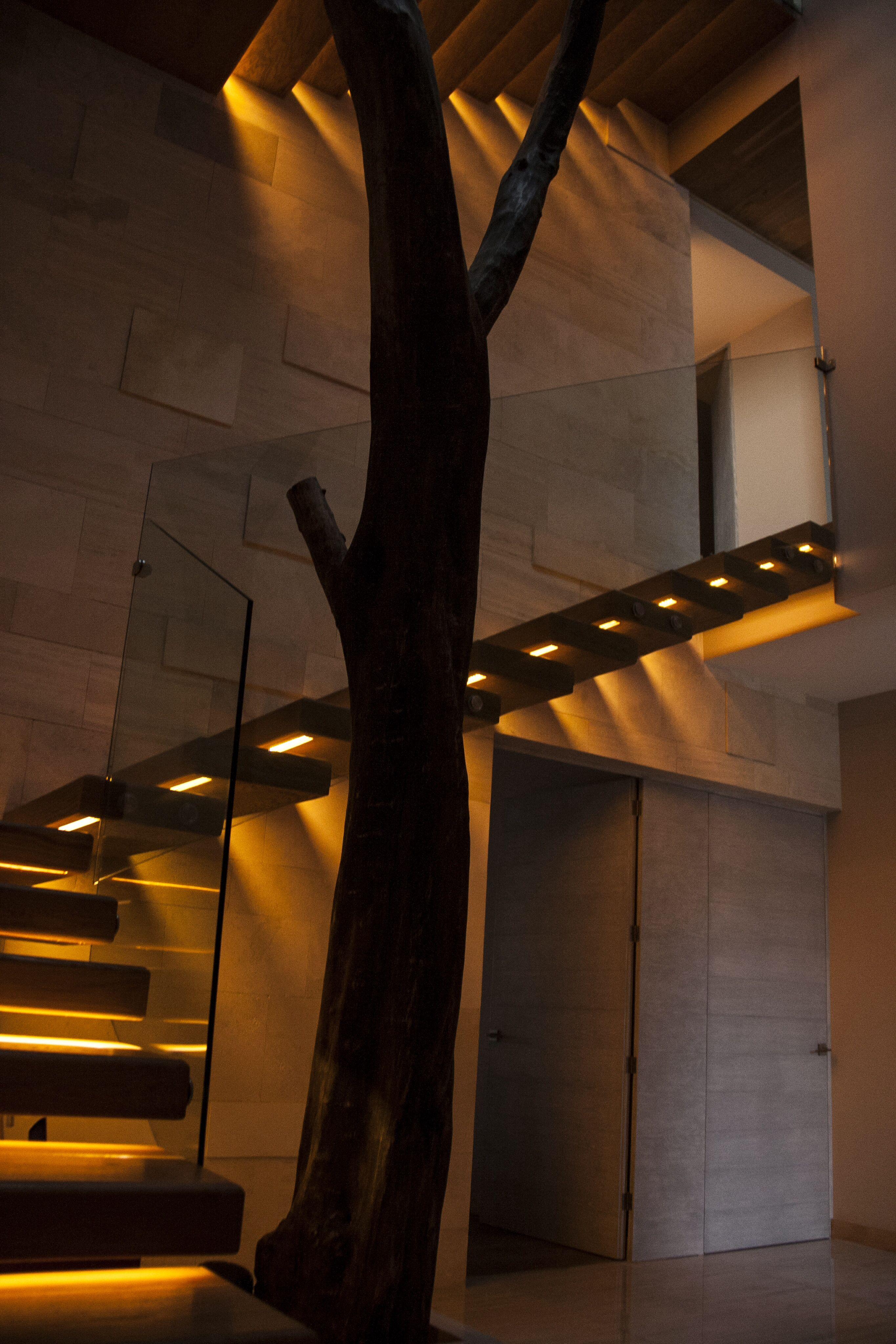 patio interior escalera madera iluminacin indirecta rbol muros de