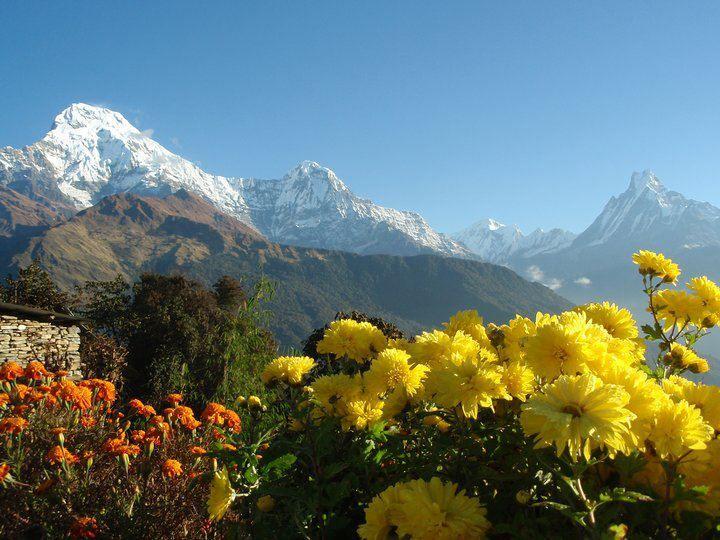 Mucha gente asocia Nepal con Everest, y los que no sean amantes del alpinismo podrían descartarlo y...