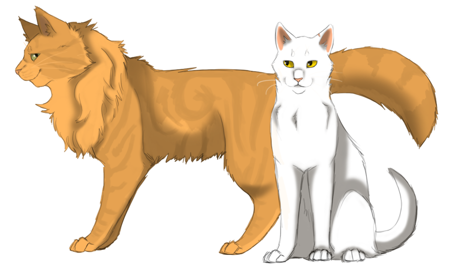 Warrior Cat Names In Thunderclan With No Mate