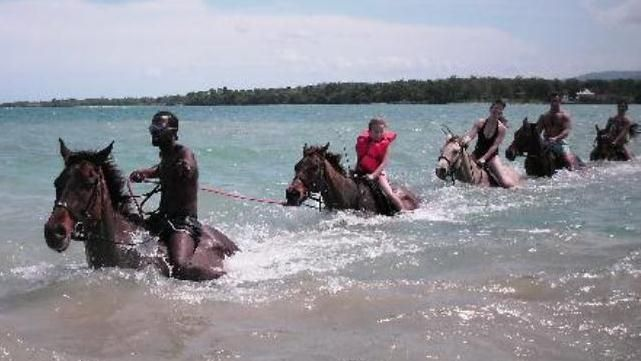 Beach And Ocean Heritage Horseback Ride Ocho Rios Jamaica Caribbean Central America Strips