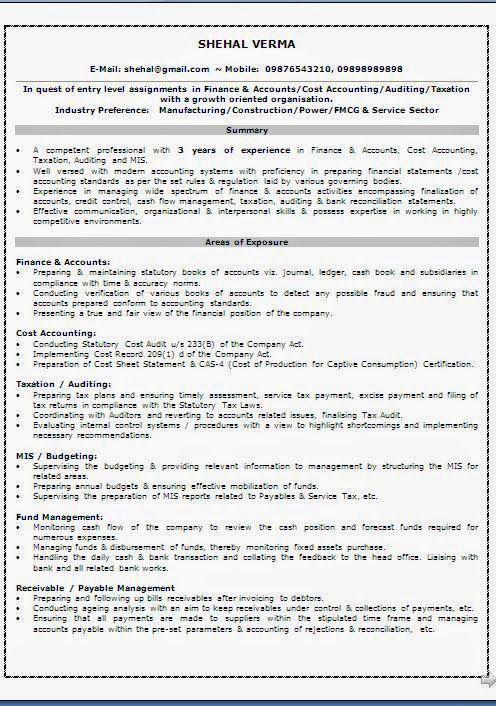 Fmcg Resume Sample. Visual Artist Resume (Resumecompanion) Resume