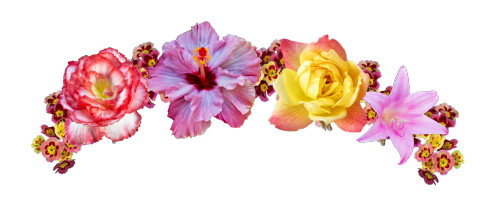 Flower Crown Png Tumblr Crown Png Flower Clipart Flower Crown