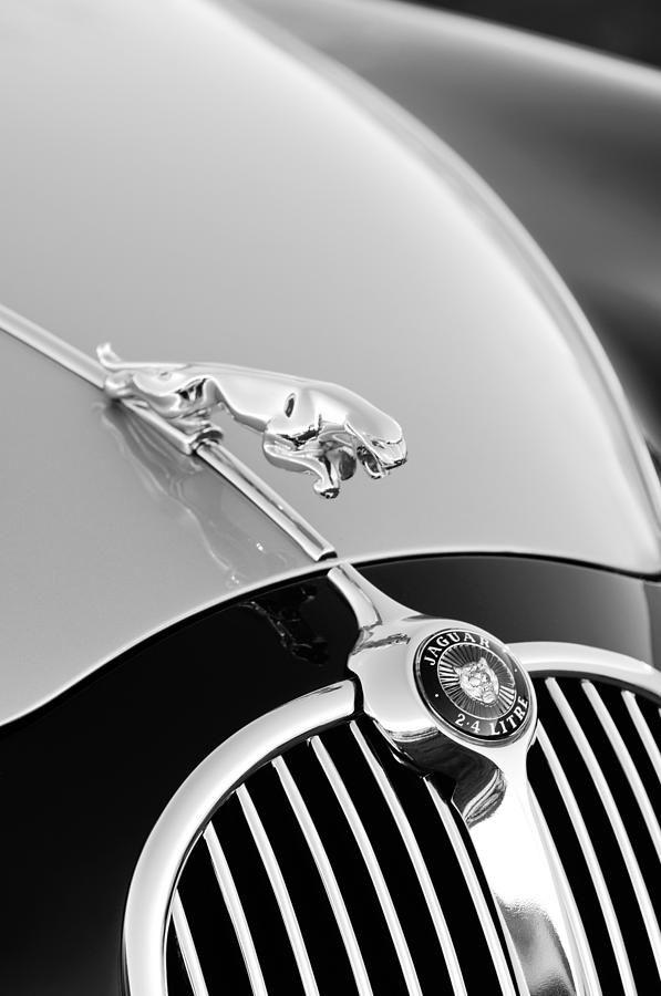 Extra Large Leaper Jaguar Hood Ornament Classic Car