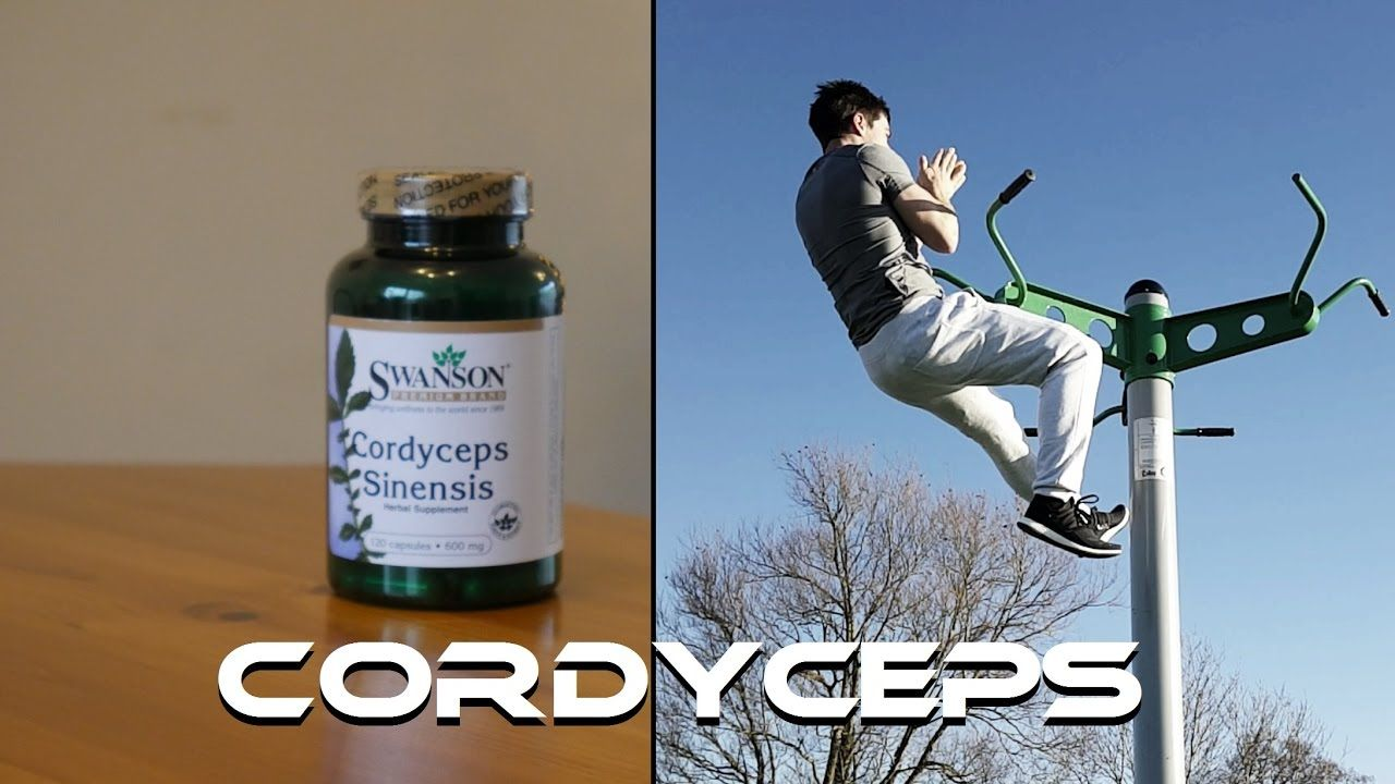 Cordyceps Sinensis - A Powerful Mushroom for Energy, Testosterone and Ae...