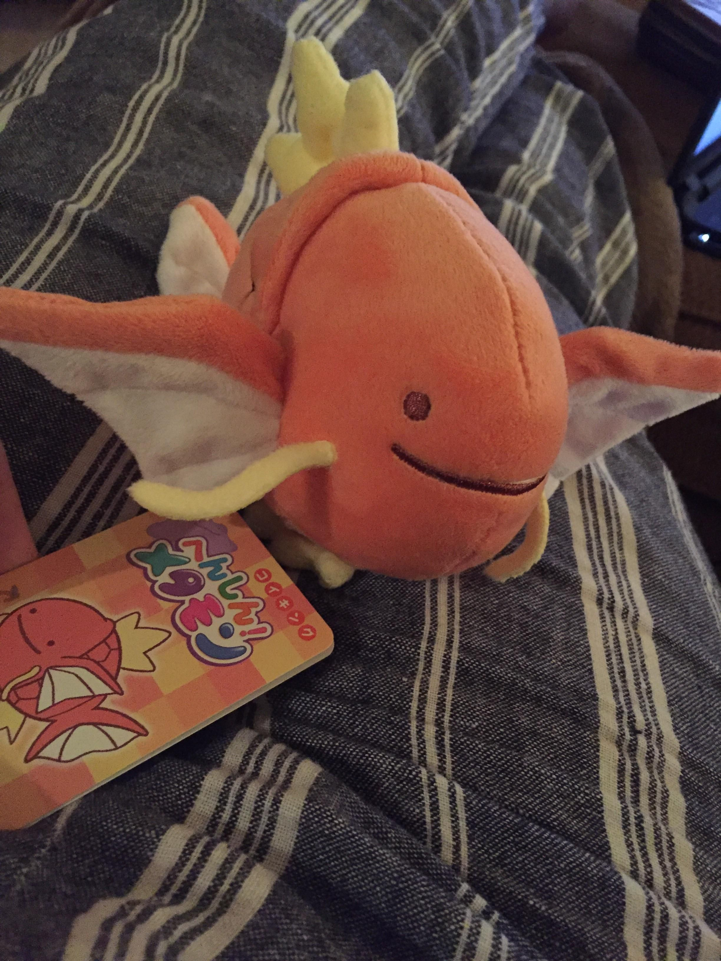 For your viewing pleasure my ditto magikarp plushie i