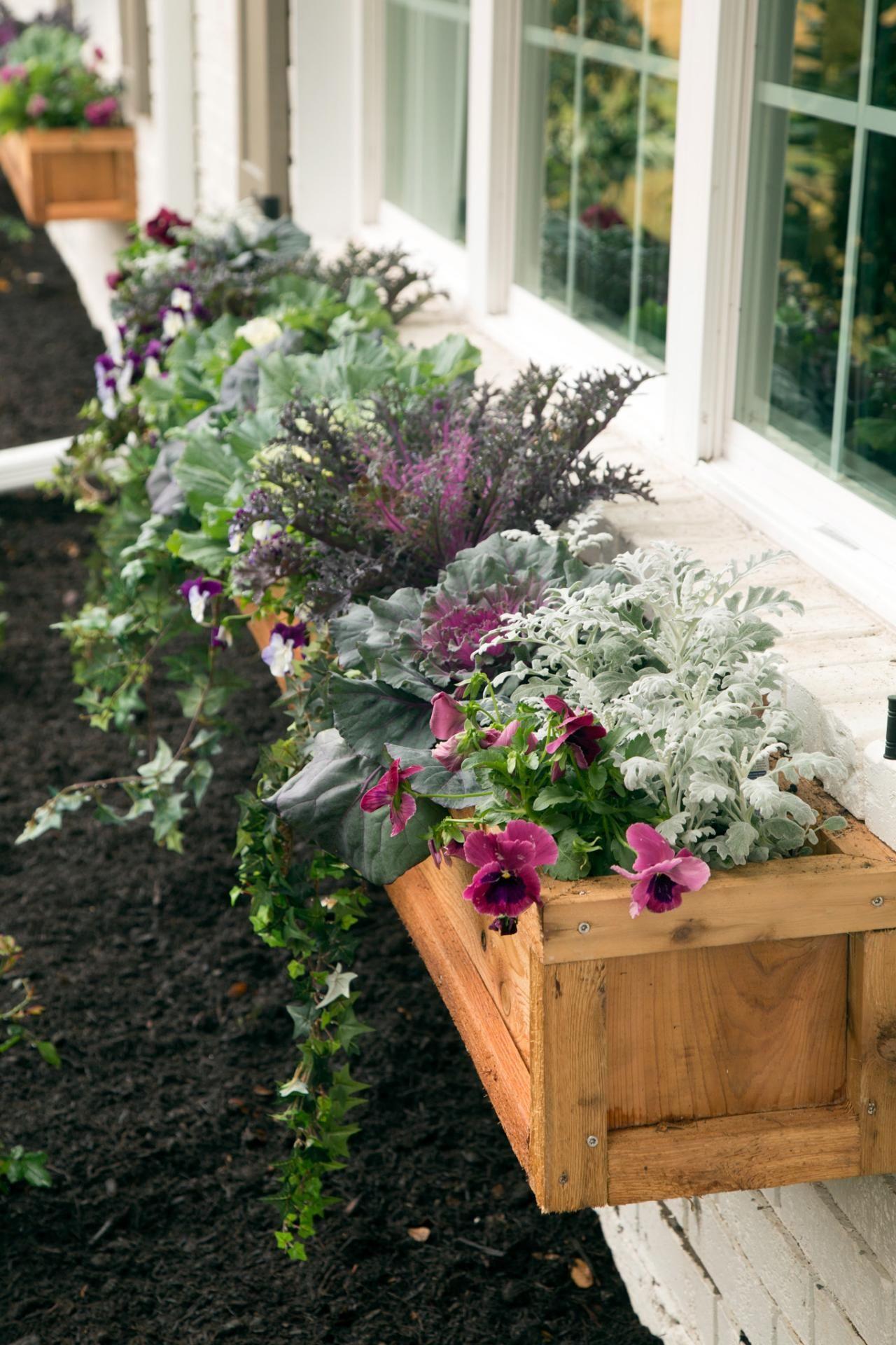 As seen on HGTV's Fixer Upper Window box flowers, Window