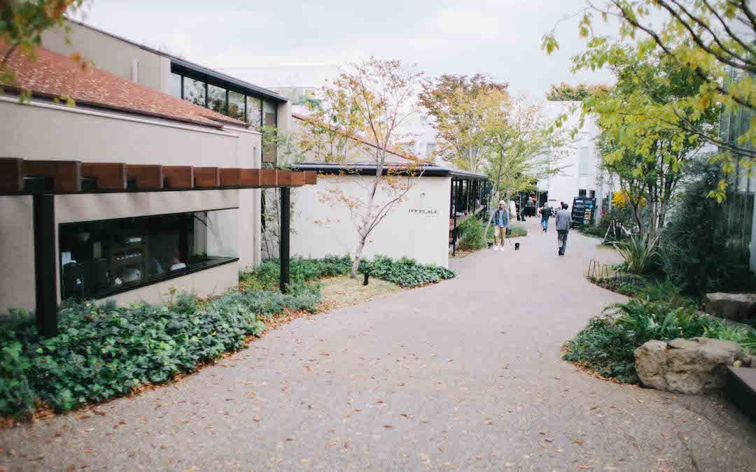 ivy place tokyo - Google Search
