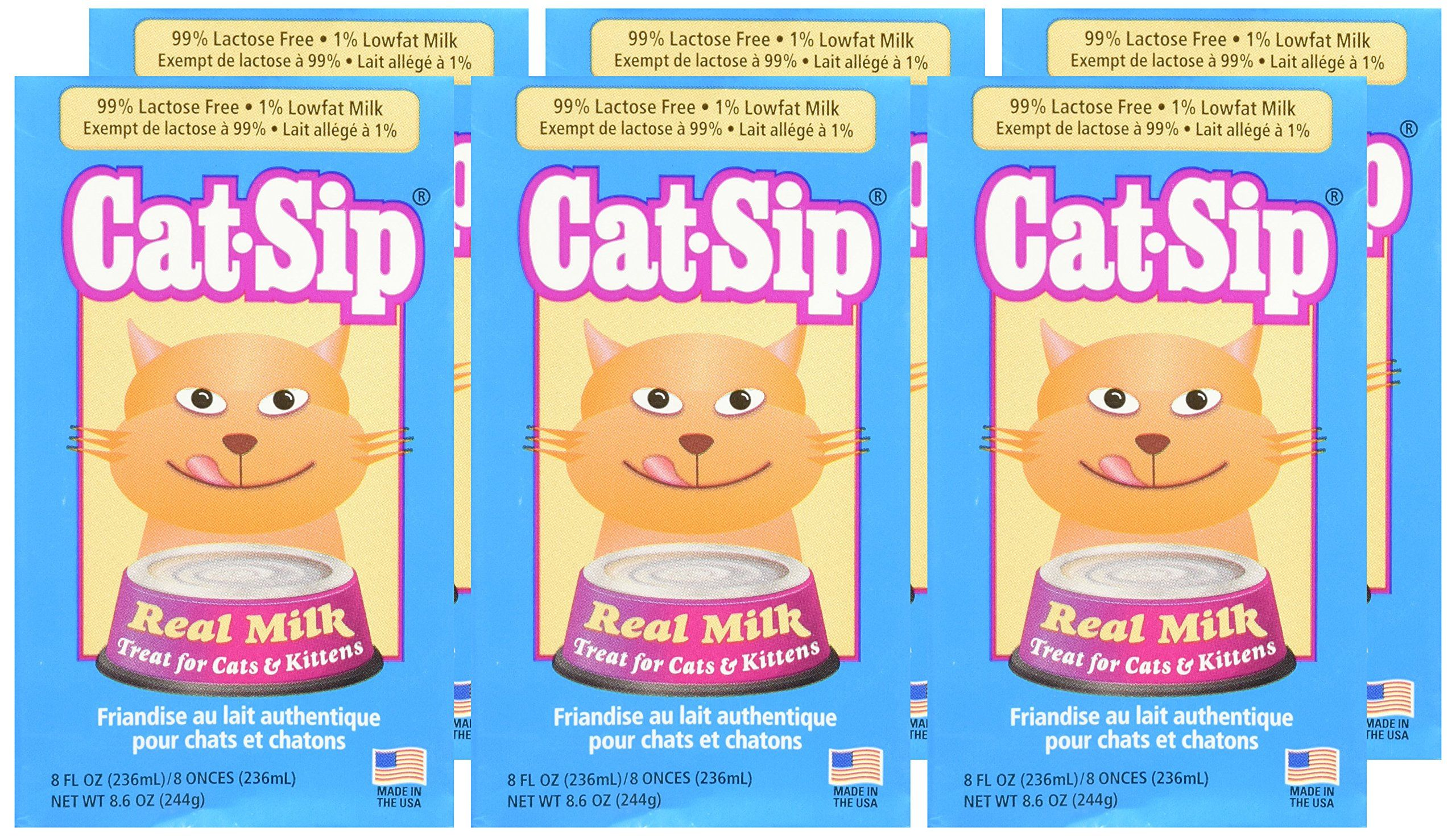 6 pack cat sip real milk treat for cats and kittens 8