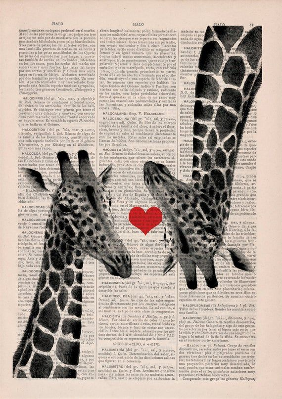 Giraffes in love Red heart on Vintage book page perfect for gifts  ANI012b