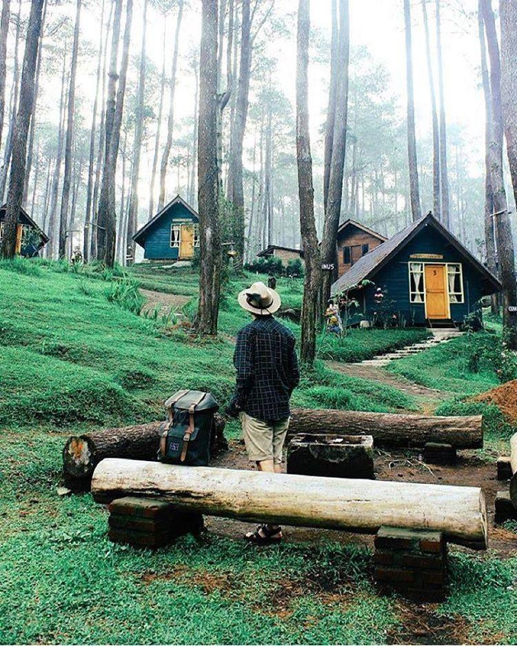 Bandung Dan Sekitarnya Adalah Tempat Rumah Kakak Guesthouse West Java Lembang Cabins In The Woods