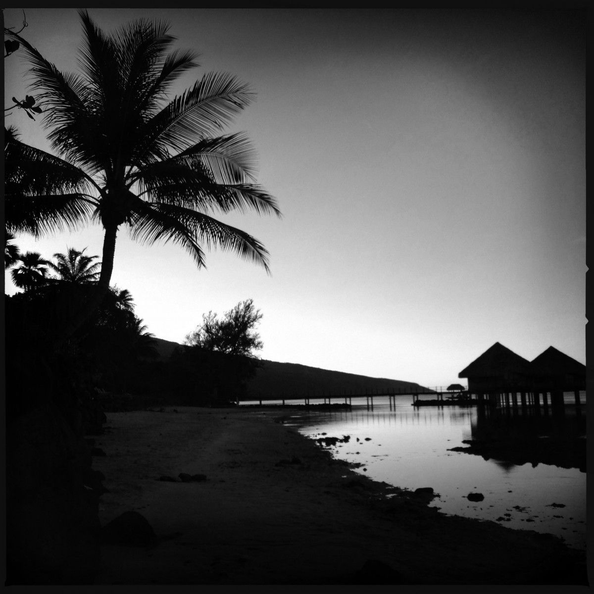 the beach a black white mobile photography photo essay of the beach a black white mobile photography photo essay of tahiti my life s