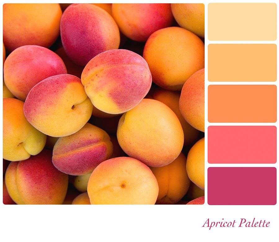 Orange Color Palette | varying shade of orange. It depends on the intensity  of the