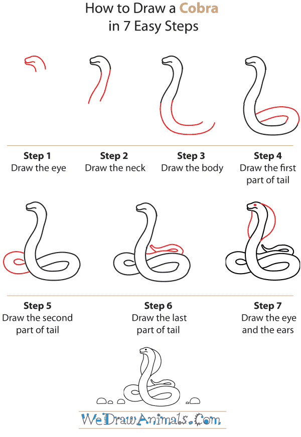 How to Draw a Cobra | Drawing Guides | Drawings, Snake ...