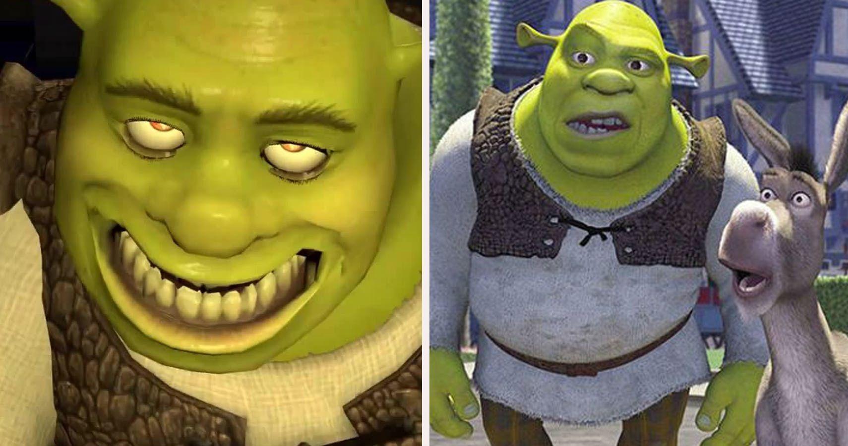Pin By Lisa K On Shrek Shrek Ogre Dankest Memes