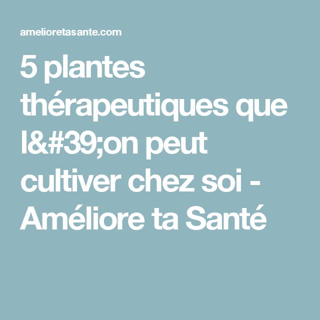 5 plantes thérapeutiques que l'on peut cultiver chez soi - Améliore ta Santé