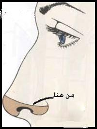 كونتور الانف الطويل والارنبه النازله تحطي من نفس مكان الإشارة في الصورة الجمال أنتي Beautytips Beautyou Beauty Makeup Makeup Beauty