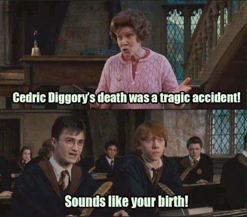 Annoying Teacher Harry Potter Teachers Cedric Harry Potter Puns Harry Potter Funny Harry Potter Jokes