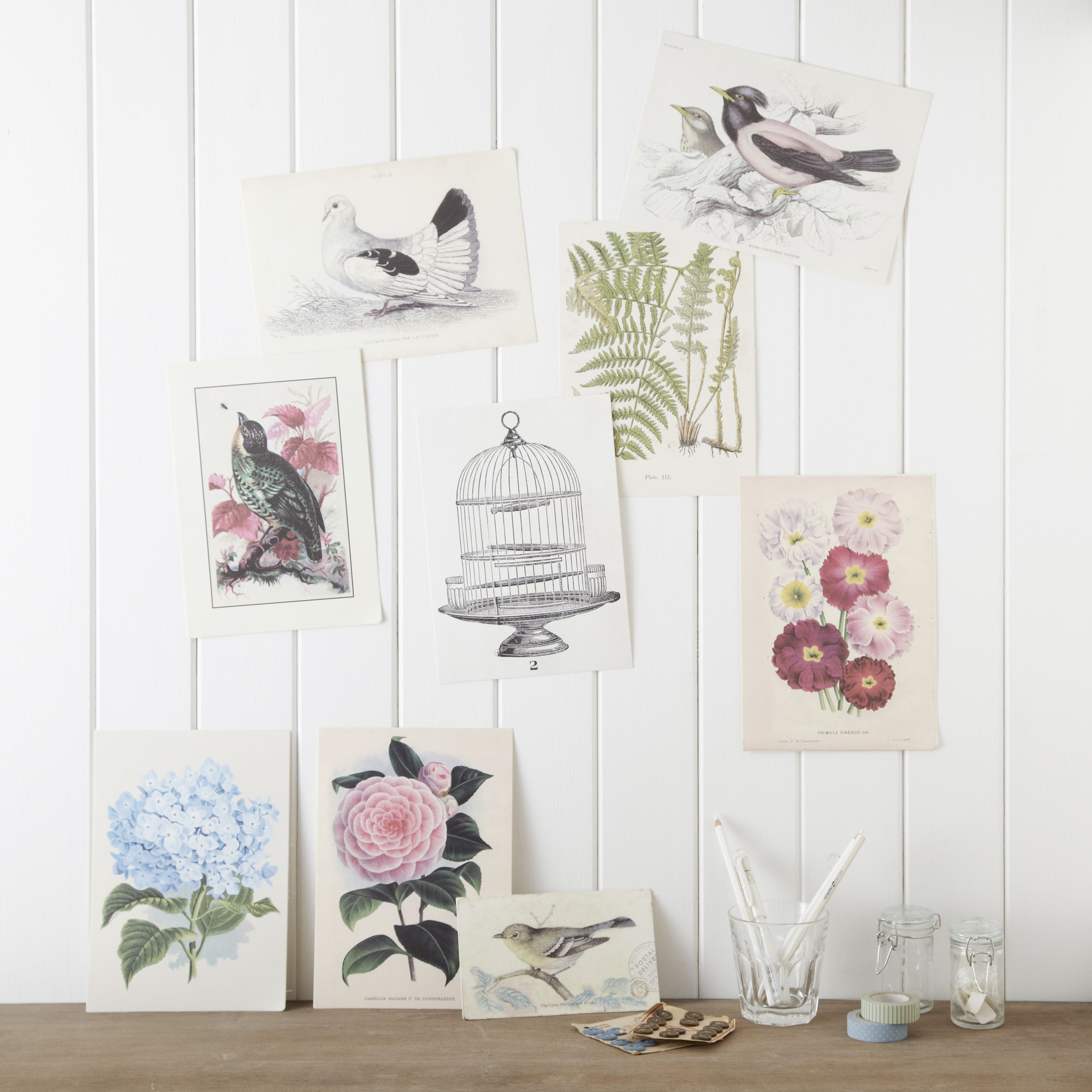 A wonderful set of 9 vintage inspired prints on thick matt paper in varying sizes. Choose your favourites to frame or simply tac up on walls, mirrors or shelves to create an ever changing display.  Largest H: 25cm x W: 19cm