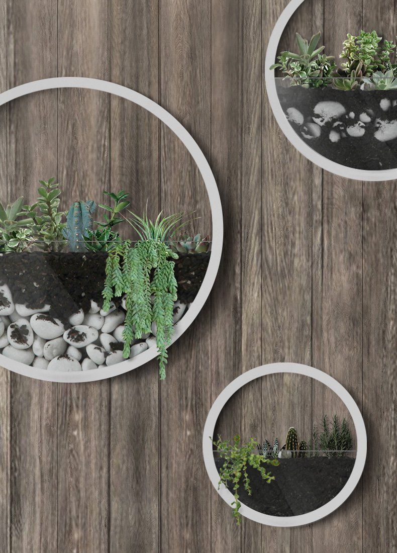 Amazon Com Best M Round Wall Hanging Plant Terrarium Iron Planter Wall Hanging Container Succulent Plant Pots Wall Vase Hanging Wall Vase Wall Hanging Designs