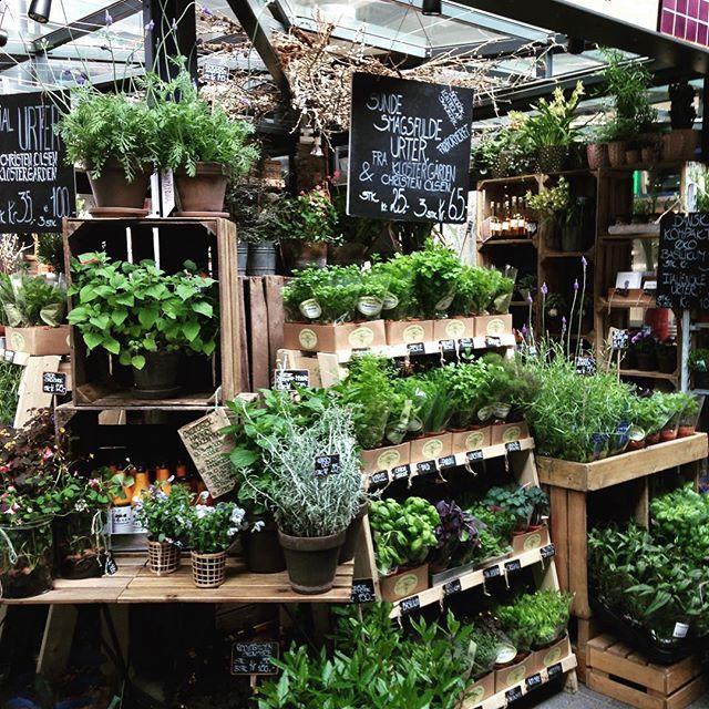 #erbearomatiche #green #copenhagen #mercatocoperto