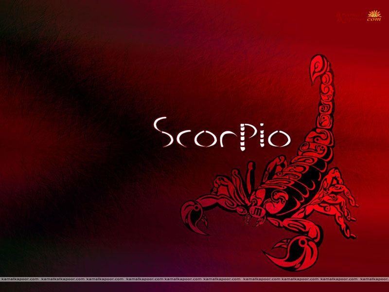 Scorpio Wallpaper Free Scorpio Wallpaper Zodiac Scorpio Designer