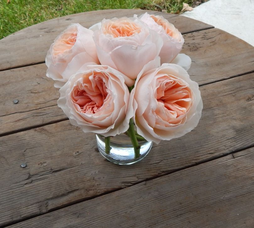 Peach Garden Rose Bouquet garden roses! - blog - iconic flowers and events | best wedding